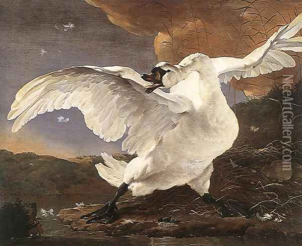 The Threatened Swan before 1652 Oil Painting - Jan Asselyn