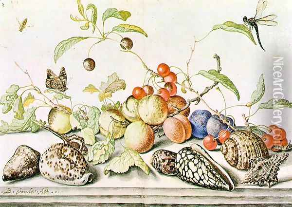 Still-life Oil Painting - Balthasar Van Der Ast