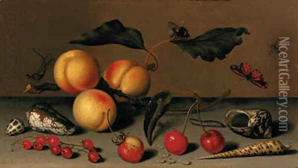 Apricots on a stalk, cherries, a wild strawberry, redcurrants, shells, a butterfly, a bee, a spider, a fly, a caterpillar and a dragonfly on a ledge Oil Painting - Balthasar Van Der Ast
