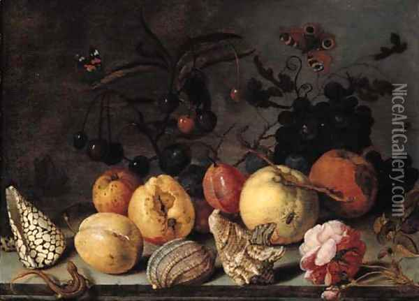 Fruit and shells, with butterflies, a dragonfly, a lizard, a snail and a fly on a stone ledge Oil Painting - Balthasar Van Der Ast