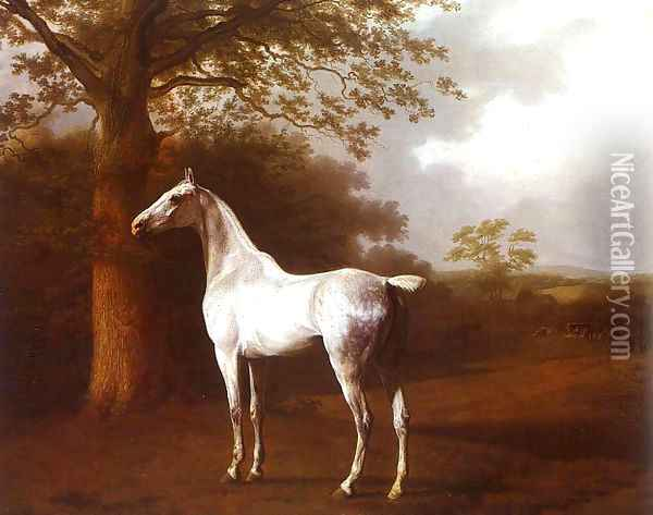White Horse in Pasture Oil Painting - Jacques Laurent Agasse
