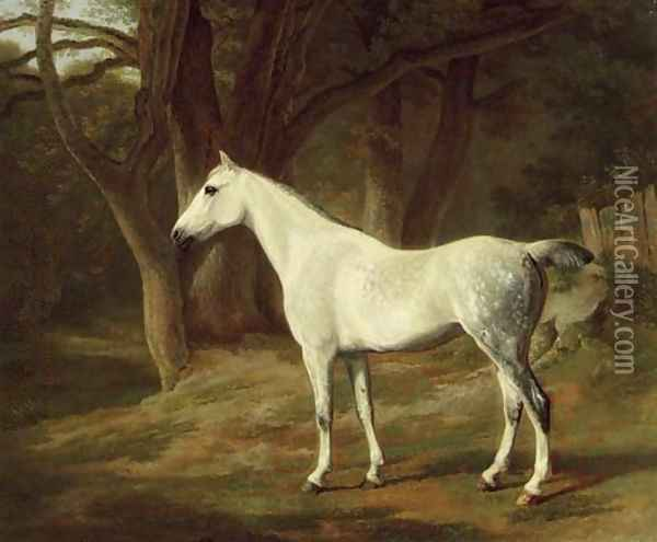 A grey hunter in a wooded landscape Oil Painting - Jacques Laurent Agasse