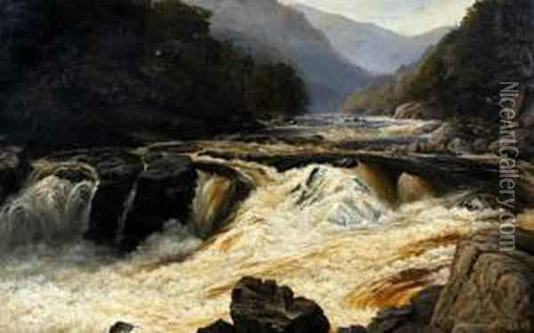 A Highland Stream In Spate Oil Painting - John Brandon Smith