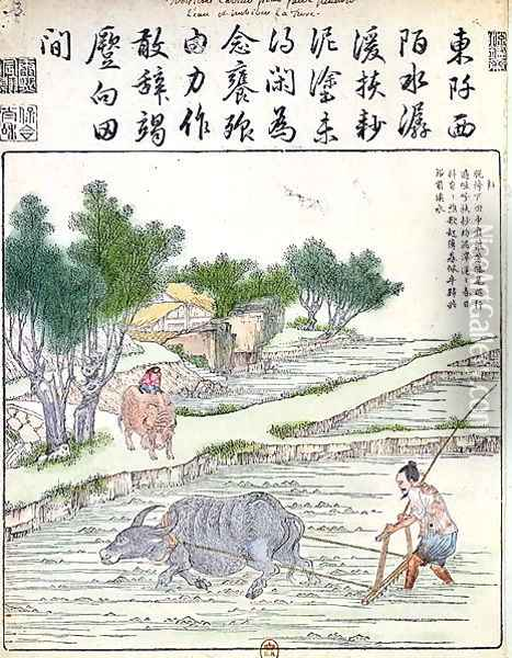 Rice cultivation in China (2) Oil Painting - Anonymous Artist