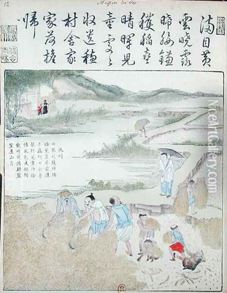 Harvest, The Rice Culture in China Oil Painting - Anonymous Artist