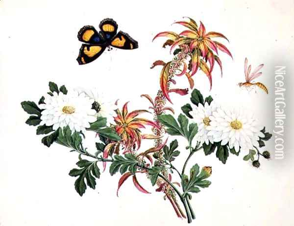 Two Stems of Amaranthus and Chrysanthemum with a Wasp and a Butterfly Oil Painting - Anonymous Artist