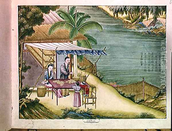 Sorting the Cocoons, from a book on the silk industry Oil Painting - Anonymous Artist