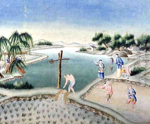 Rice Fields Oil Painting - Anonymous Artist