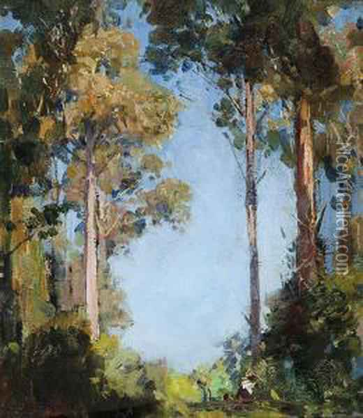 The Glade At Olinda Oil Painting - Arthur Ernest Streeton