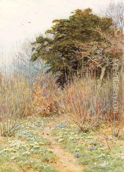 In a Spring Copse 'Here the white-rayed anemone is born' Oil Painting - Helen Mary Elizabeth Allingham