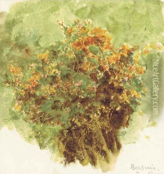 Study of berberis sunshine Oil Painting - Helen Mary Elizabeth Allingham