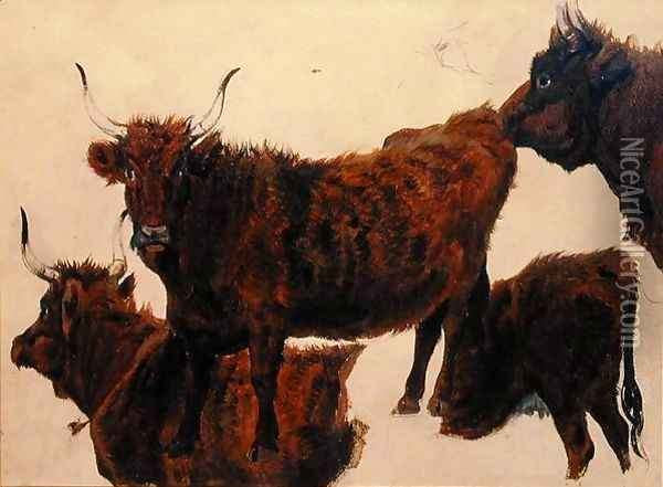Studies of Highland Cattle Oil Painting - Richard Ansdell