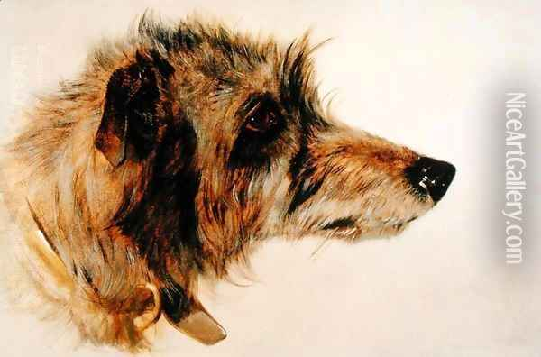 Head of a Dog Oil Painting - Richard Ansdell