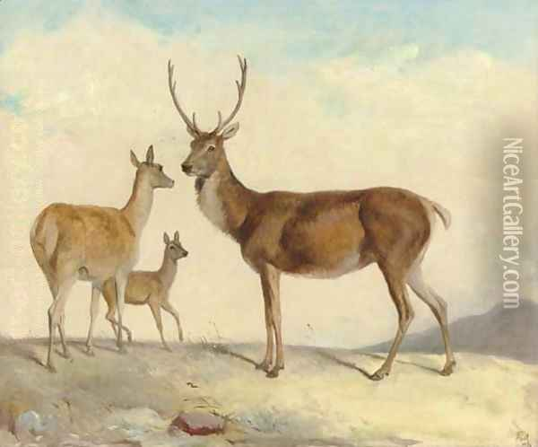 The hart Samson, the hind Delilah and the calf Judith, in a highland landscape Oil Painting - Richard Ansdell