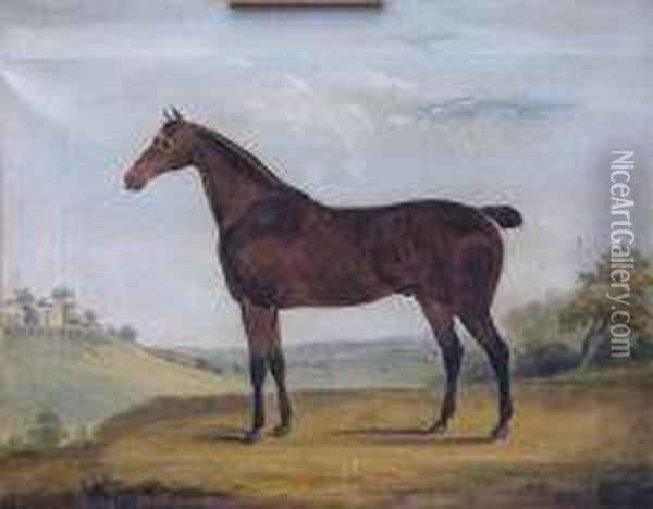 Horse In A Landscape Oil Painting - George Stubbs