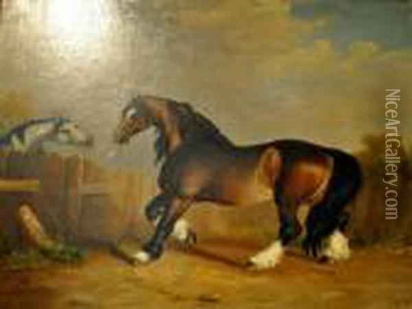 Study Of A Brown Horse Oil Painting - George Stubbs