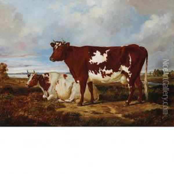Cows Resting In A Pasture Oil Painting - Arthur Fitzwilliam Tait