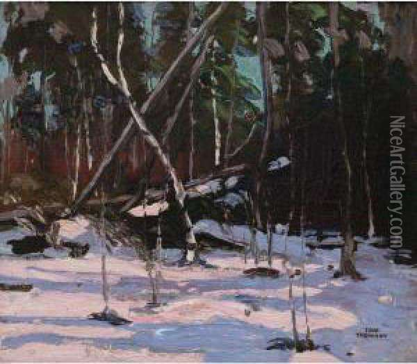 Early Snow, Algonquin Park Oil Painting - Tom Thomson