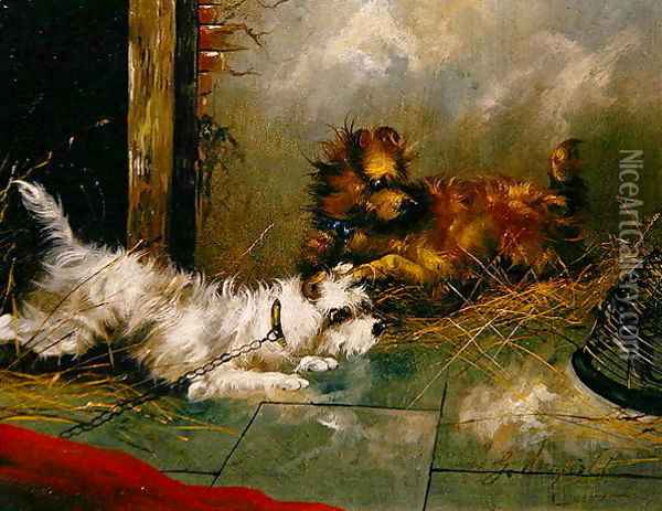 Terriers Playing Oil Painting - George Armfield