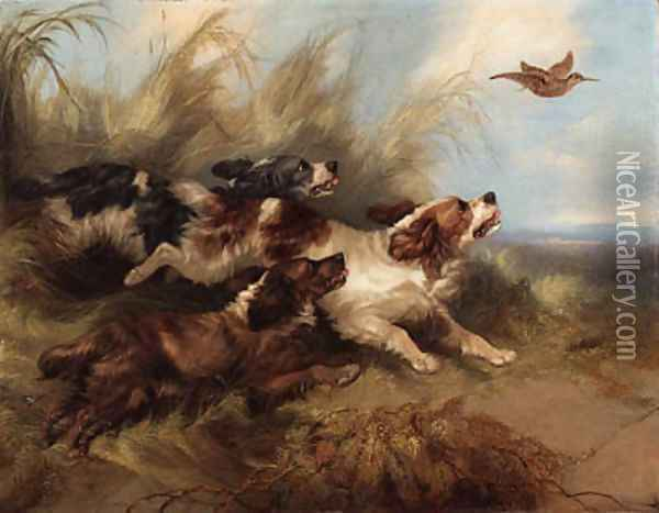 Spaniels putting up Oil Painting - George Armfield