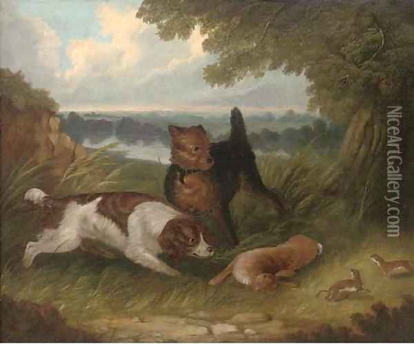 A terrier and spaniel with a hare Oil Painting - George Armfield