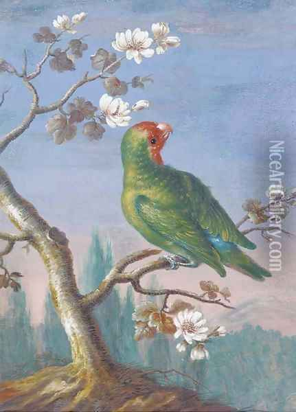 A Red Fronted Parakeet Oil Painting - Christoph Ludwig Agricola