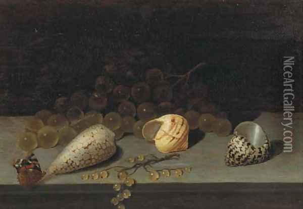 Shells, a brunch of white grapes, white currants and a butterfly on a ledge Oil Painting - Balthasar Van Der Ast
