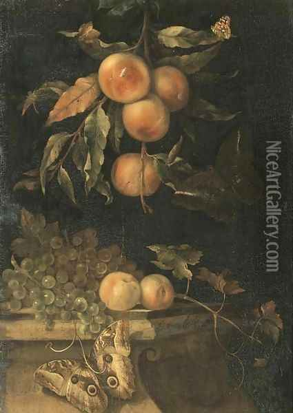 A still life with peaches and butterflies on a ledge Oil Painting - Willem Van Aelst