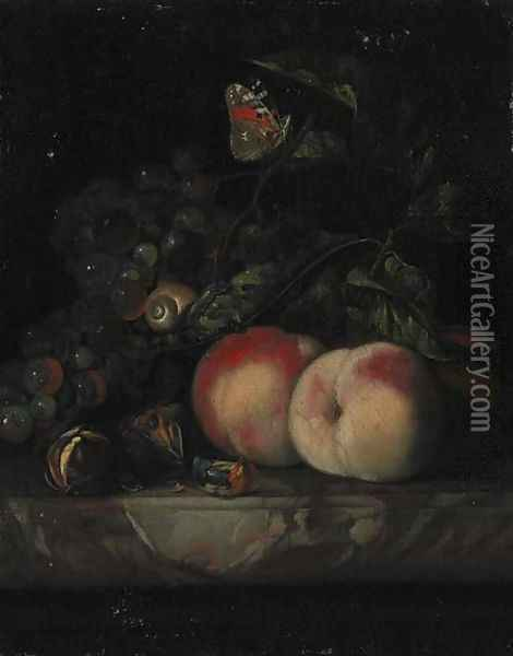 Grapes, peaches and walnuts, with a snail and a butterfly in foliage on a marble ledge Oil Painting - Willem Van Aelst