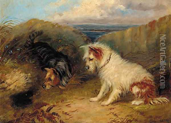 Terriers by a rabbit hole Oil Painting - George Armfield