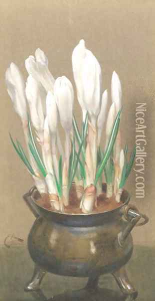 White crocuses in a pewter bowl Oil Painting - Edwin Alexander