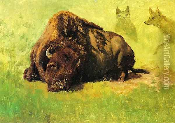 Bison with Coyotes in the Background Oil Painting - Albert Bierstadt
