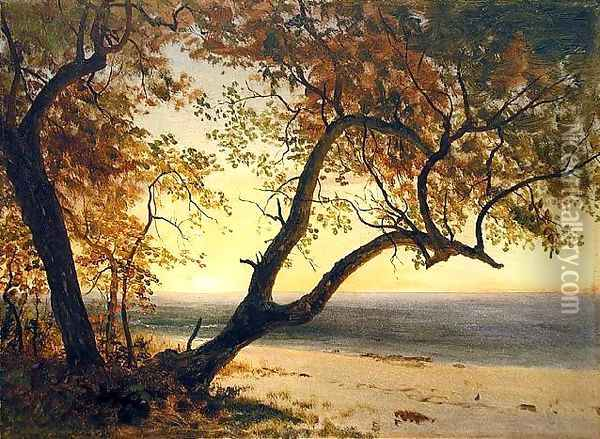 Untitled [Landscape in Florida or the Bahamas] Oil Painting - Albert Bierstadt