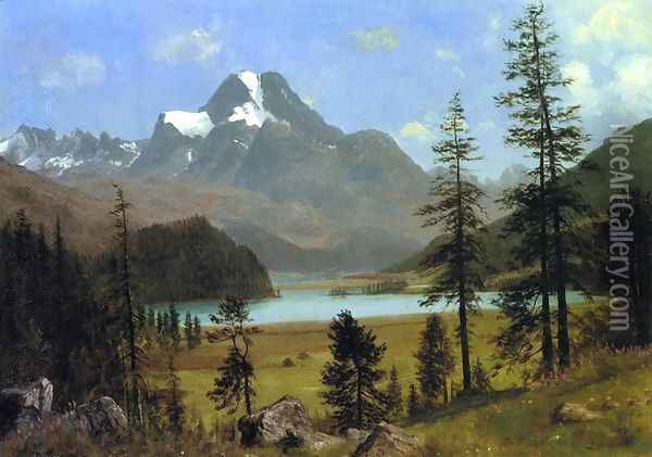 Long's Peak, Estes Park, Colorado Oil Painting - Albert Bierstadt