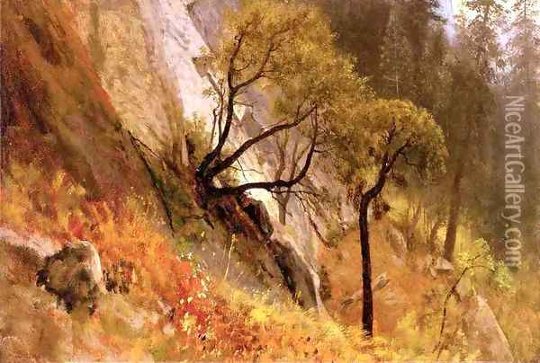 Landscape Study: Yosemite, California Oil Painting - Albert Bierstadt