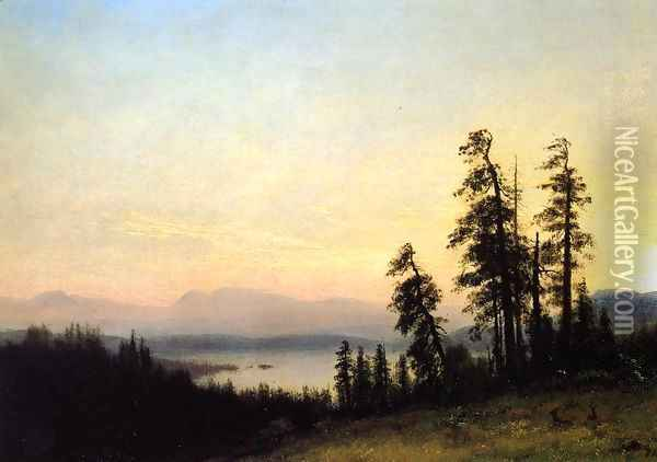 Landscape with Deer, View of Estes Park, Colorado Oil Painting - Albert Bierstadt