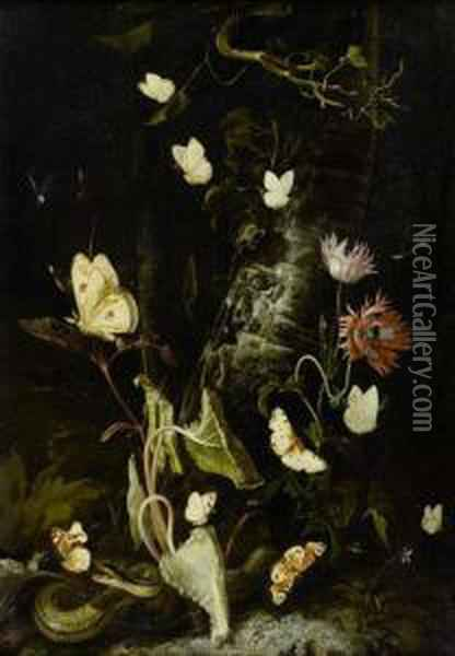Forest Still Life With Butterflies, Snake, Frog And Dragon Fly Oil Painting - Otto Marseus Snuff. Van Schrieck