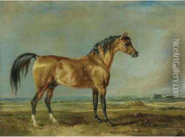 The Marquess Of Londonderry's Arabian Stallion In A Landscape Oil Painting - James Ward