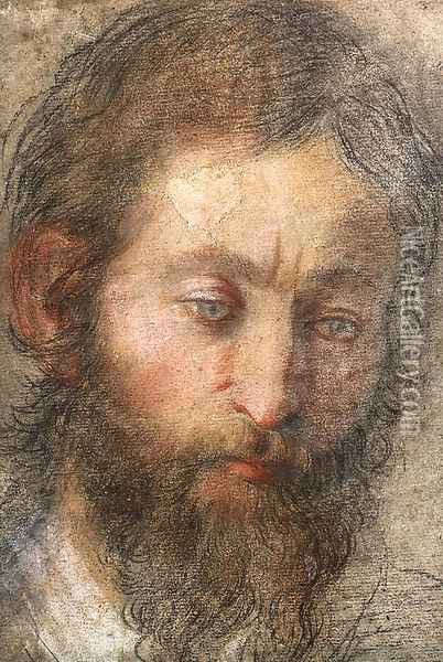 The head of a man looking down Oil Painting - Federico Fiori Barocci