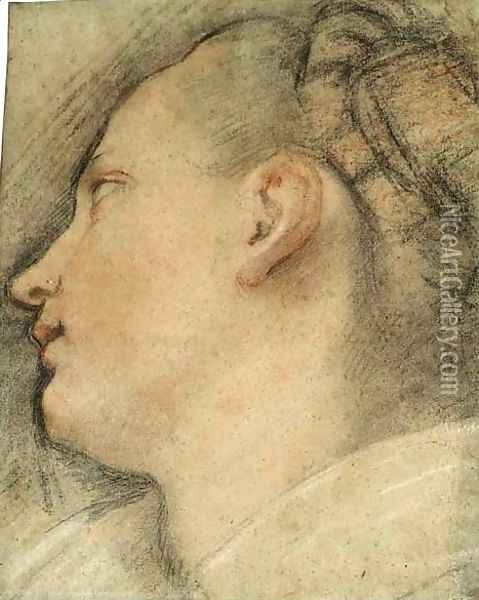 The Head Of A Young Woman, In Profile Looking Up To The Left Oil Painting - Federico Fiori Barocci