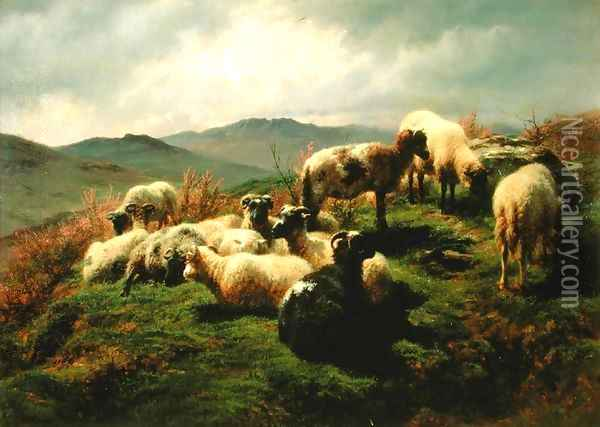 Sheep in the Highlands 1856 Oil Painting - Rosa Bonheur