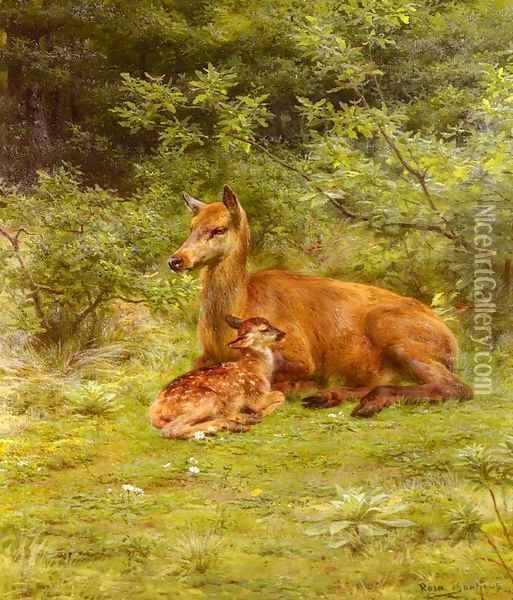 Doe And Fawn In A Thicket Oil Painting - Rosa Bonheur