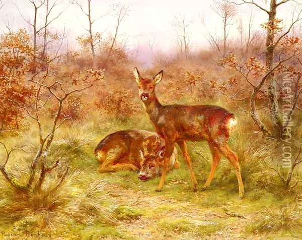 Un Couple De Chevreuils Dans Le Foret De Fontainebleau (A Couple of Roe-deers in the Forest of Fontainebleau) Oil Painting - Rosa Bonheur