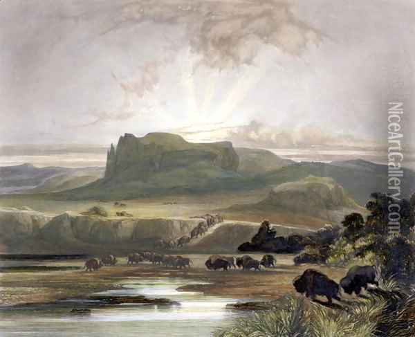 Herd of Bison on the Upper Missouri, plate 40 from Volume 2 of 'Travels in the Interior of North America' Oil Painting - Karl Bodmer