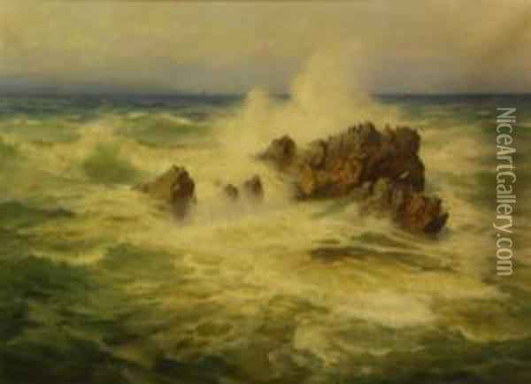 Cormerants Perched On A Rock In A Roughsea Oil Painting - Henry B. Wimbush