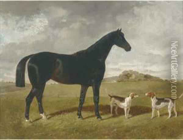 A Dark Brown Hunter With Two Hounds In A Landscape, With Brindlechurch, Lancashire, Beyond Oil Painting - Henry Woollett