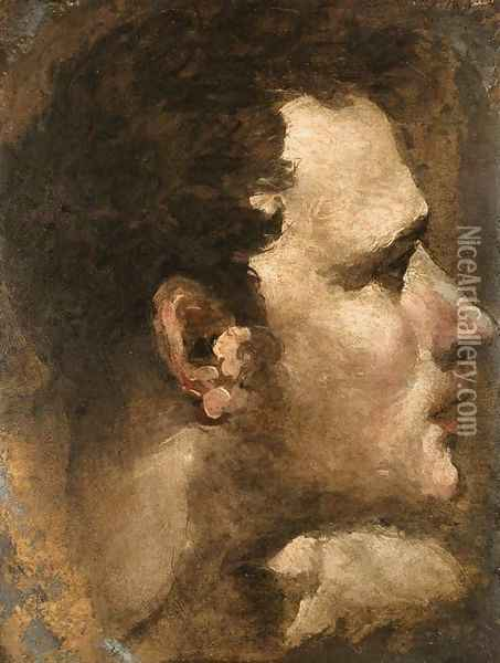Head of a Youth Seen in Profile Oil Painting - Domenico Beccafumi