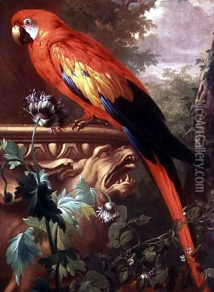 Scarlet Macaw in a Landscape Oil Painting - Jakab Bogdany