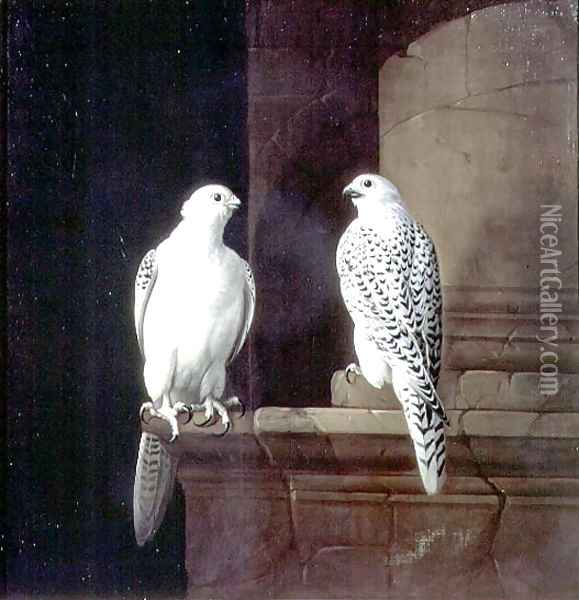 Two Iceland Falcons Oil Painting - Jakab Bogdany