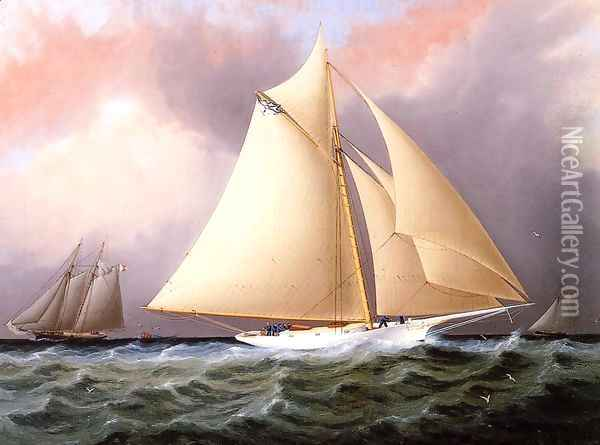 Yacht under Full Sail Oil Painting - James E. Buttersworth